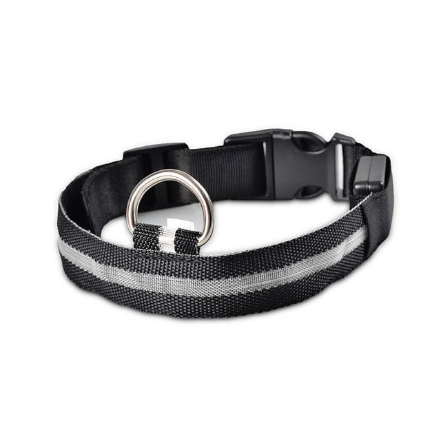 dog collar with light