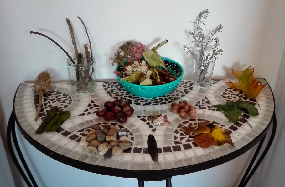 The Nature Table
