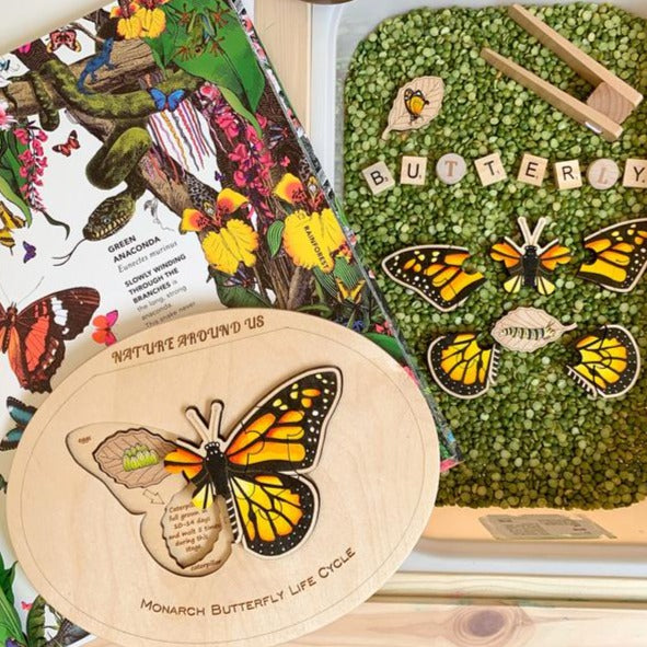 Butterfly Life Cycle Puzzle - Montessori Learning by Playing Materials