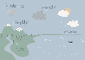 Water Cycle - Educational Card - Learning by Playing Materials