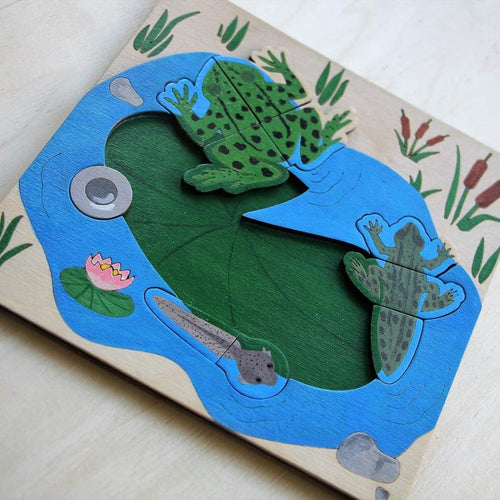 Frog Life Cycle Puzzle - Montessori Learning by Playing Materials