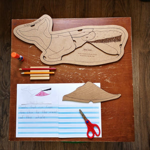 Anatomy of a Humpback Whale Puzzle - Montessori Learning by Playing Materials