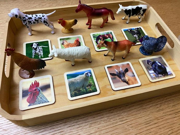 Matching Activity Farm Animals - Object To Card Montessori Waldorf