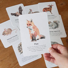 Load image into Gallery viewer, Mammals Educational Cards Set- Flashcards Learning by Playing Materials