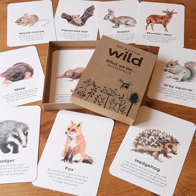 Mammals Educational Cards Set- Flashcards Learning by Playing Materials
