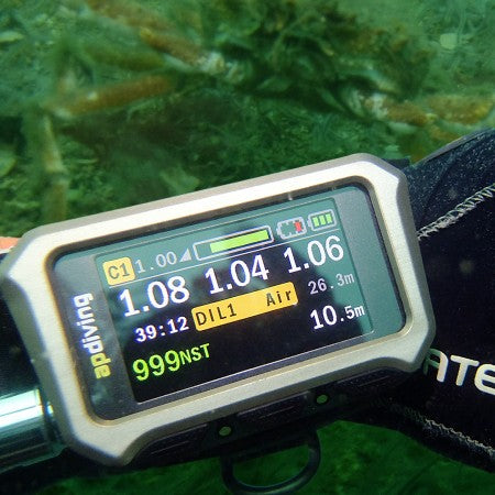 2020vision-colour-display-underwater