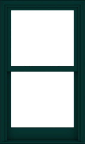 WDMA 32x54 (31.5 x 53.5 inch)  Aluminum Single Hung Double Hung Window without Grids-5