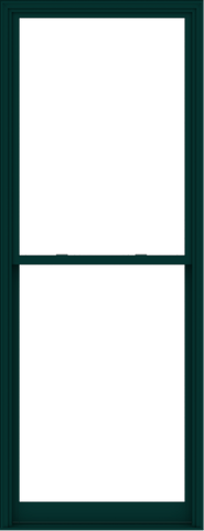 WDMA 44x114 (43.5 x 113.5 inch)  Aluminum Single Hung Double Hung Window without Grids-5