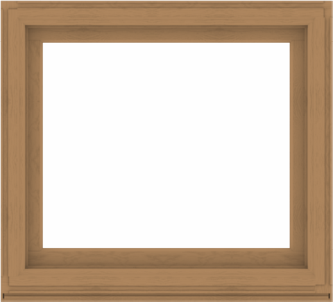 WDMA 44x40 (43.5 x 39.5 inch) Composite Wood Aluminum-Clad Picture Window without Grids-1