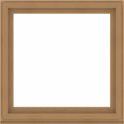 WDMA 52x52 (51.5 x 51.5 inch) Composite Wood Aluminum-Clad Picture Window without Grids-1
