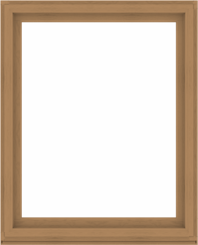 WDMA 52x64 (51.5 x 63.5 inch) Composite Wood Aluminum-Clad Picture Window without Grids-1