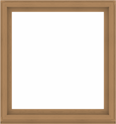 WDMA 56x60 (55.5 x 59.5 inch) Composite Wood Aluminum-Clad Picture Window without Grids-1