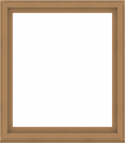 WDMA 56x64 (55.5 x 63.5 inch) Composite Wood Aluminum-Clad Picture Window without Grids-1