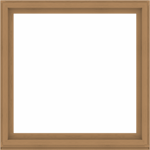 WDMA 64x64 (63.5 x 63.5 inch) Composite Wood Aluminum-Clad Picture Window without Grids-1