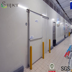 China supplier 100mm cold room hinged door with 0.8x1.8m on China WDMA