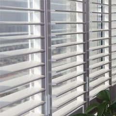 glass louvre windows/ frosted glass shutters on China WDMA