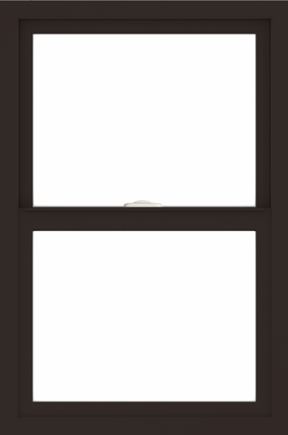 WDMA 24x36 (23.5 x 35.5 inch) Dark Bronze aluminum Single and Double Hung Window without grids interior
