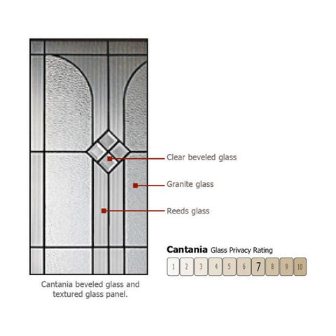 WDMA 46x80 Door (3ft10in by 6ft8in) Exterior Mahogany 80in Cantania Arch Lite Door /1side 2