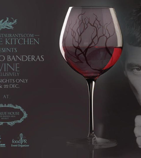 Antonio Banderas Wine Tasting session