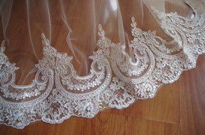 Alencon lace trim,ivory sequined lace trim CGDZ53 - lace era