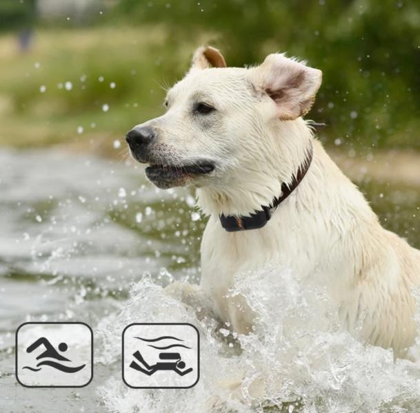 Waterproof IPX7 Anti Barking Dog Electric Training Shock Collar with Shock/ Vibration/ Sound