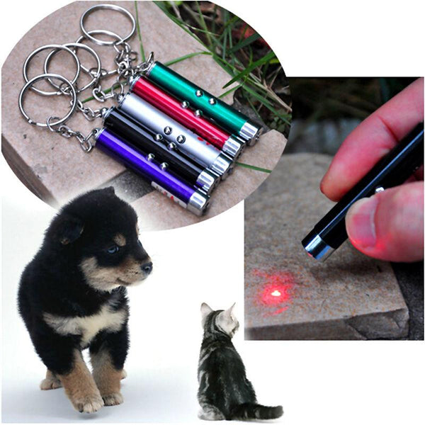 Red Laser Pointer Play Cat Toy