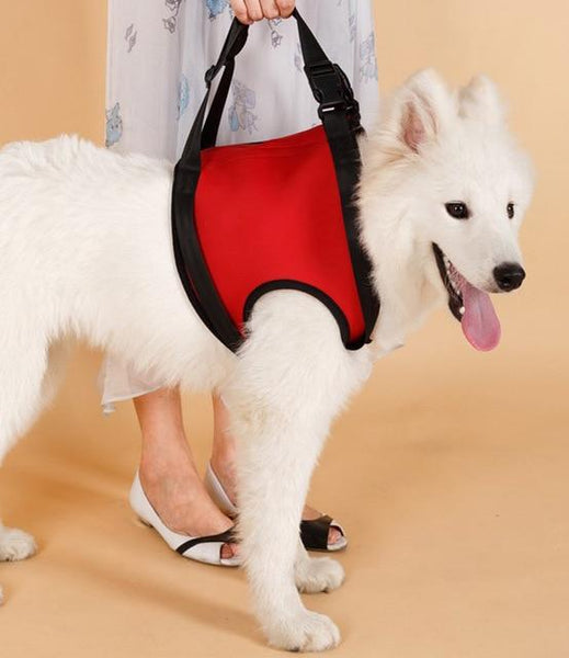 Doggy Lift and Stay Support Harness