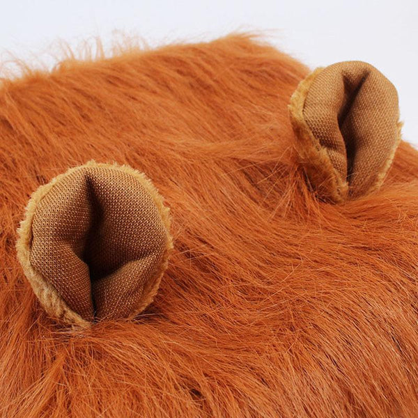 Dog Lion Mane With Ears Costume
