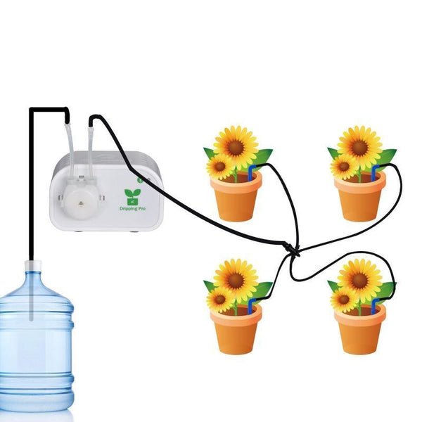 Automatic Watering Greenhouse Indoor Irrigation System