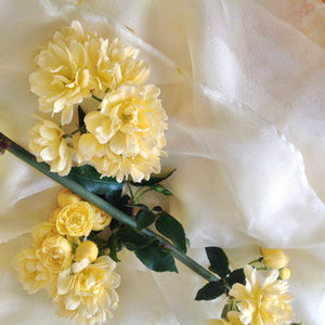 Primrose Yellow Silk Ribbons