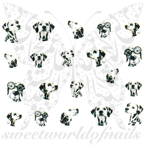 Dalmatian Dog Nail Water Decals Transfers Wraps
