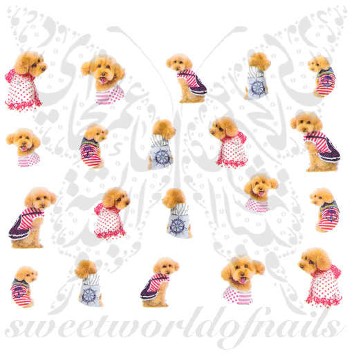 Dog Nail Art bichon frise poodle Nail Water Decals Transfers Wraps