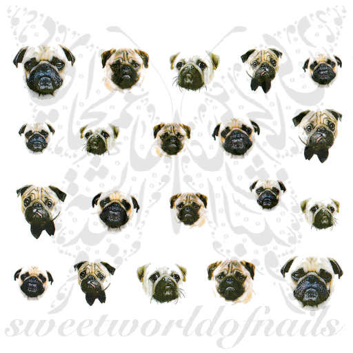 Bulldog Nail Water Decals Transfers Wraps