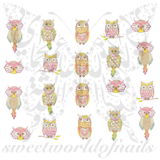Owls Nail Art Nail Water Decals Water Slides