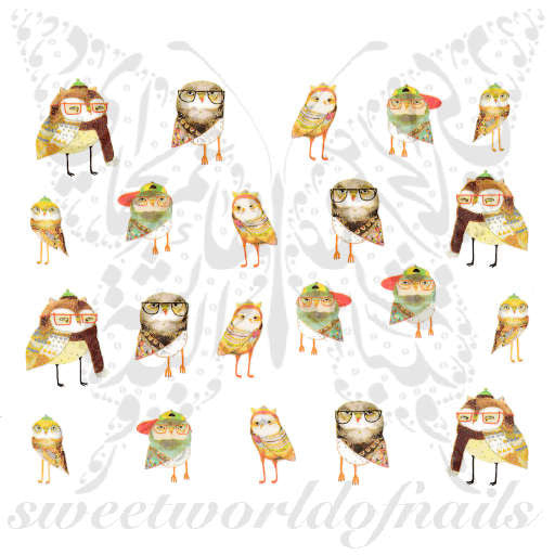 Owls with Glasses Nail Art Nail Water Decals Water Slides