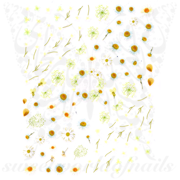 Daisy Nail Art Spring Summer Flower Stickers