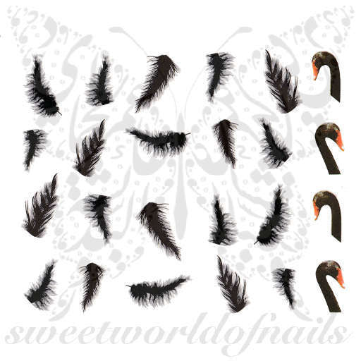 Swan Nail Art Swan Feathers Nail Water Decals Water Slides