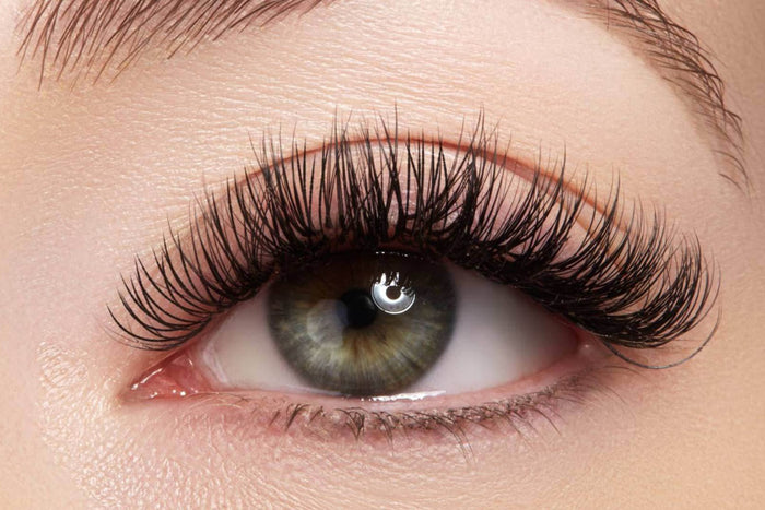 Russian Volume Lash Extensions Training includes kit