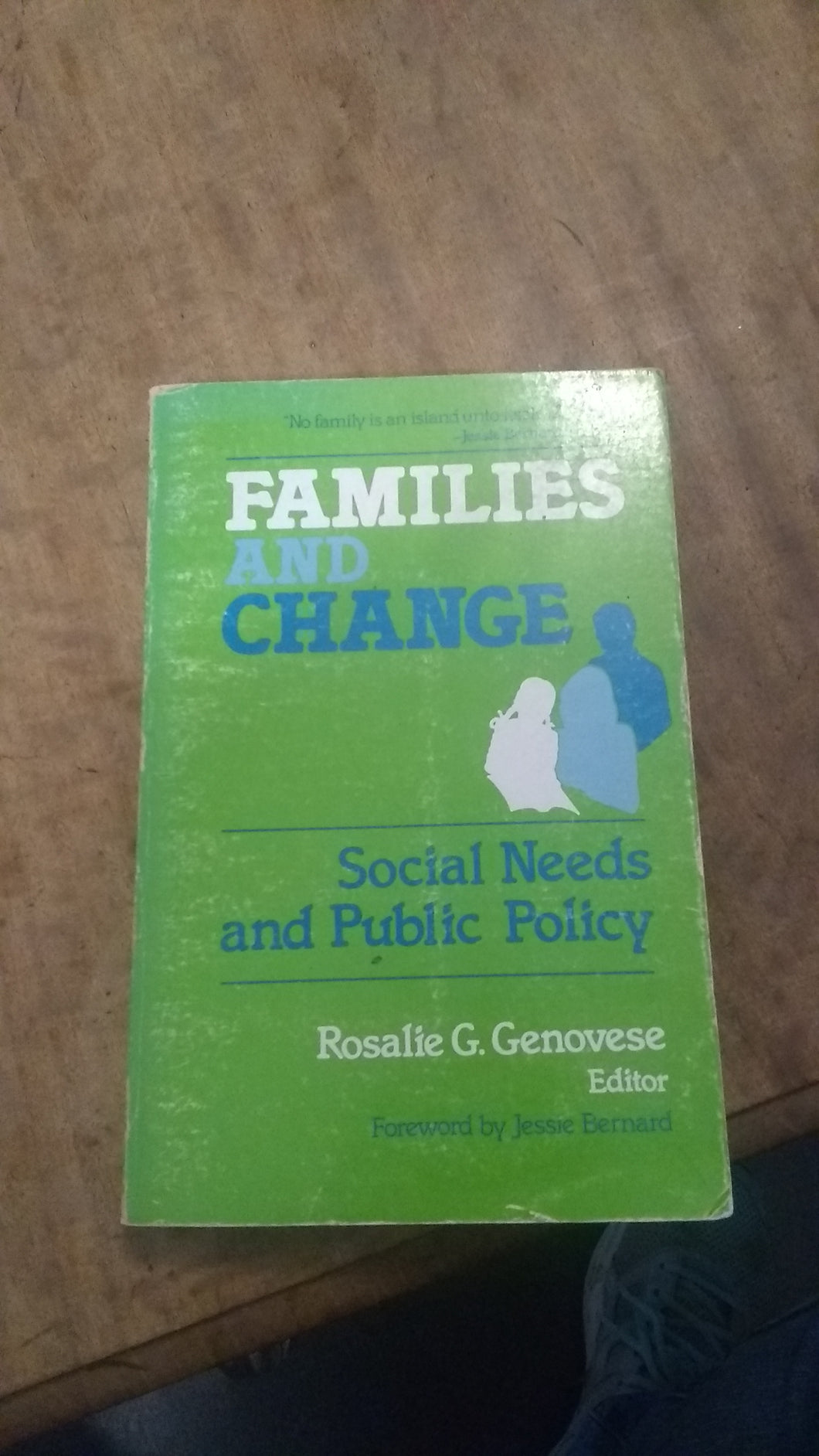 Families and Change: Social Needs and Public Policy