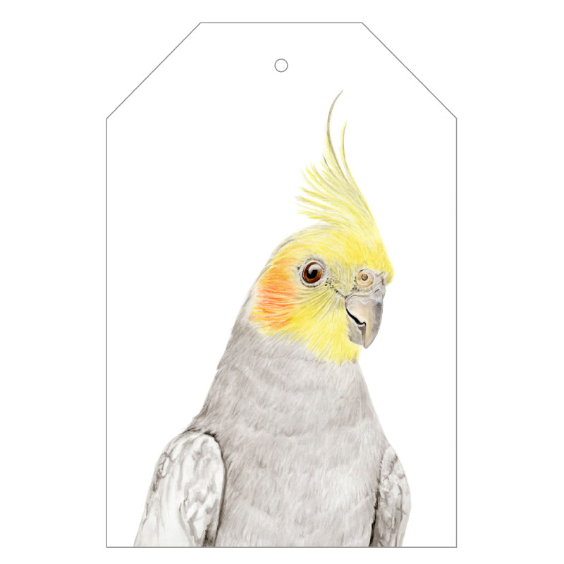 Colin the Cockatiel Gift Tags - For Me By Dee