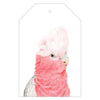 Gary the Galah Gift Tags - For Me By Dee