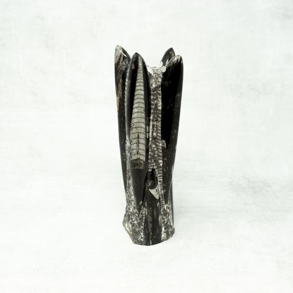 Orthoceras Tower Sculptures