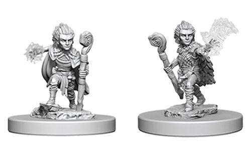 Pathfinder Deep Cuts Unpainted Minis: Gnome Male Druid