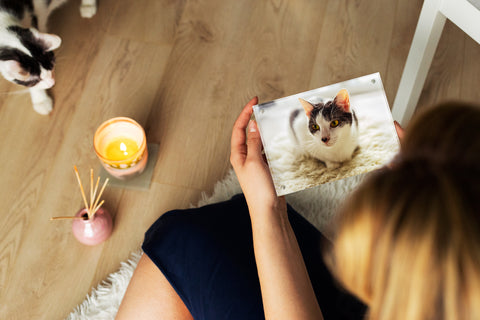 Kluger Punkt Photo Frame with cat and lady