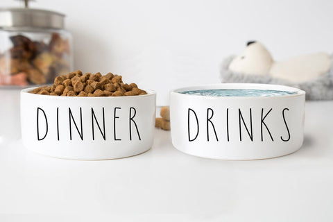 Dinner & Drinks White Ceramic Pet Food Bowl Set of 2