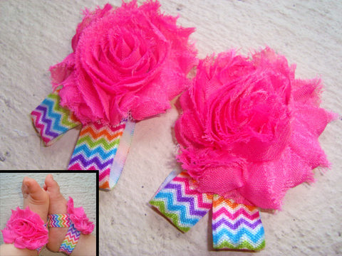 Hot Pink Rainbow Chevron Piggy Petals