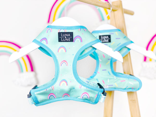Bundle - Rainbows and Sprinkles Reversible Dog Harness & Leash