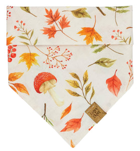 Autumn Harvest Dog Bandana