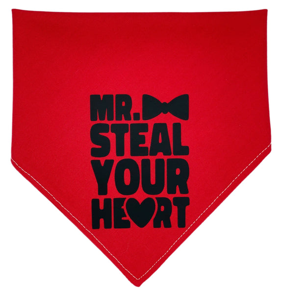 Mr Steal Your Heart Reversible Dog Bandana