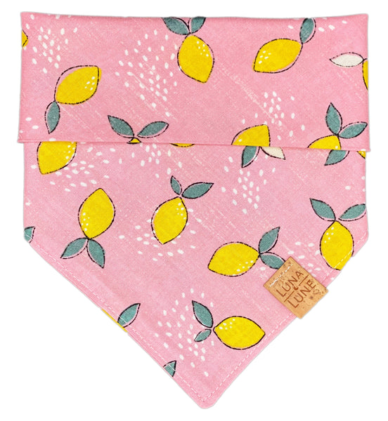 Watermelon Lemonade Dog Bandana